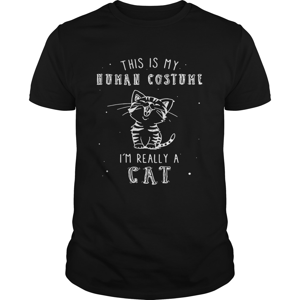 This is my human costume Im really a cat shirt