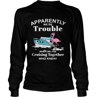 Flamingo apparently were trouble when we are cruising together who knew longsleeve tee