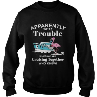 Flamingo apparently were trouble when we are cruising together who knew sweatshirt