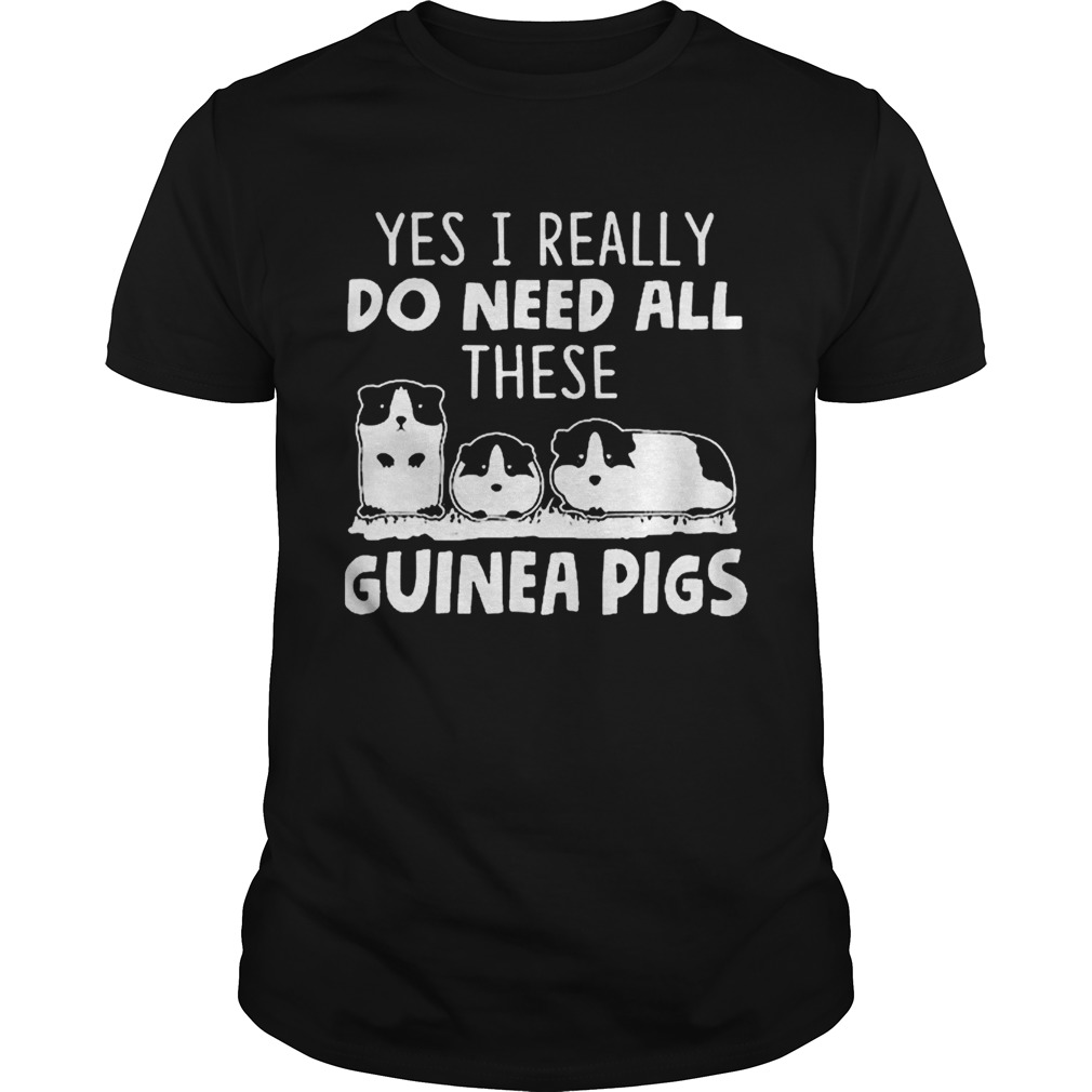 All i need is this guinea pigs shirt