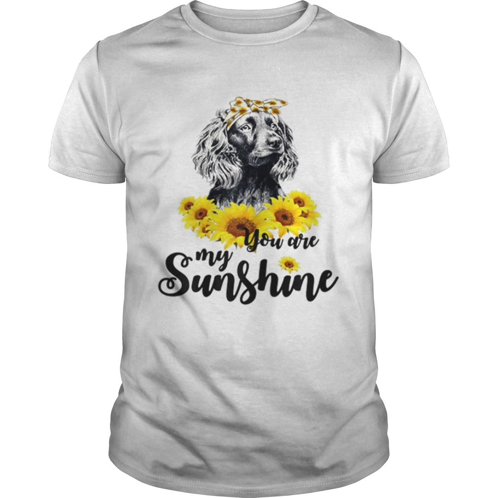 Boykin Spaniel You Are My Sunshine Sunflower shirt