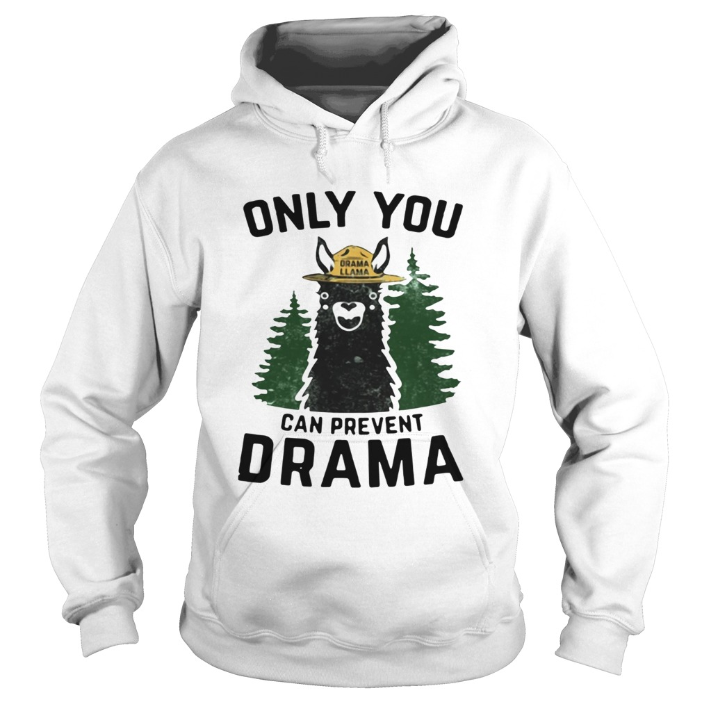 Grama Llama only you can prevent Drama Hoodie