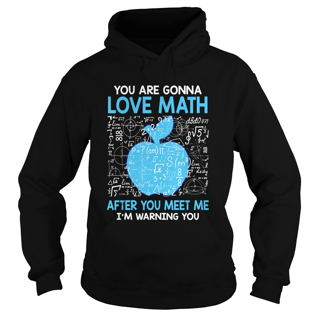You are Gonna Love Math After You Meet Me Funny Teacher TShirt Hoodie