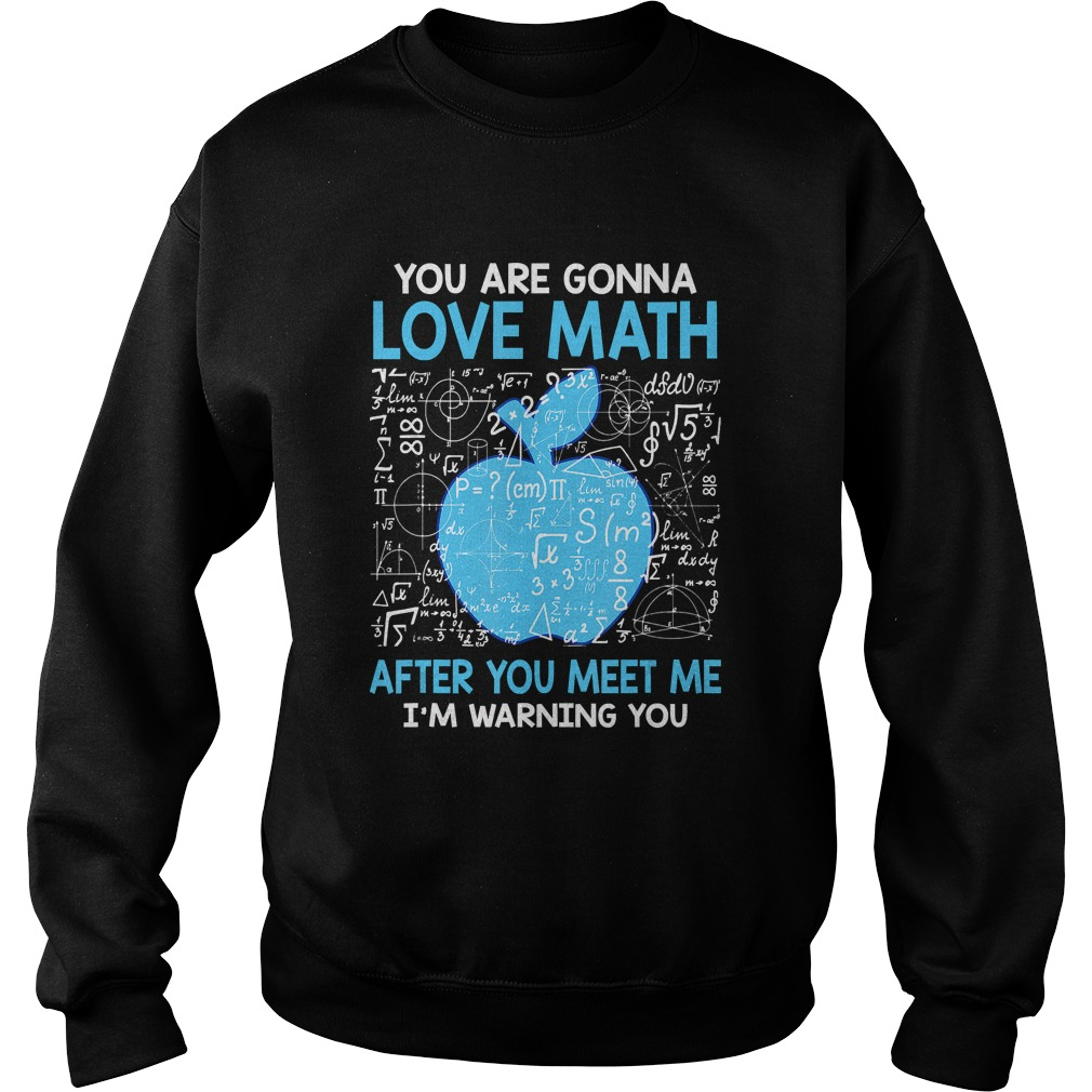 You are Gonna Love Math After You Meet Me Funny Teacher TShirt Sweatshirt