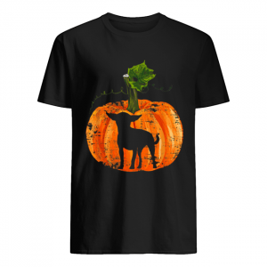 Chihuahua Inside Pumpkin Halloween  Classic Men's T-shirt