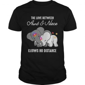Elephant The Love Between Aunt And Niece Knows No Distance Shirt Unisex