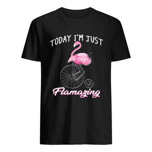 Today I'm Just Flamazing Flamingo T-Shirt Classic Men's T-shirt