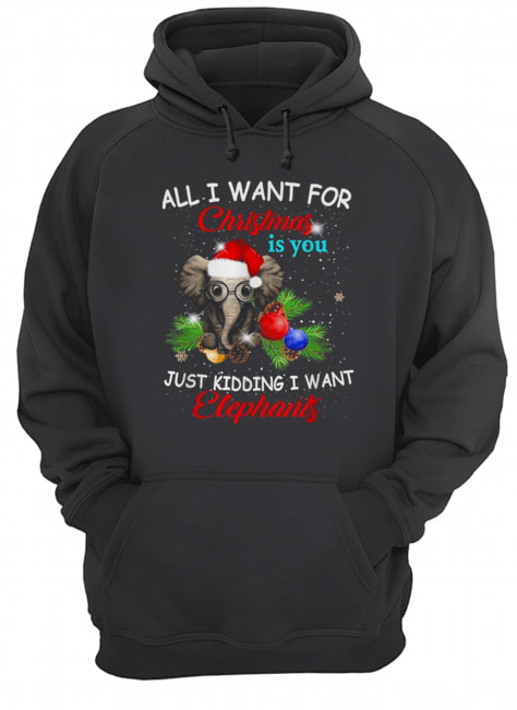 All I want for Christmas is you just kidding I want elephants  Unisex Hoodie