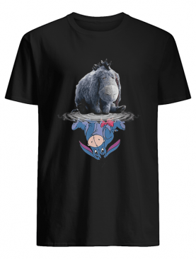 Disney Eeyore reflection water mirror shirt