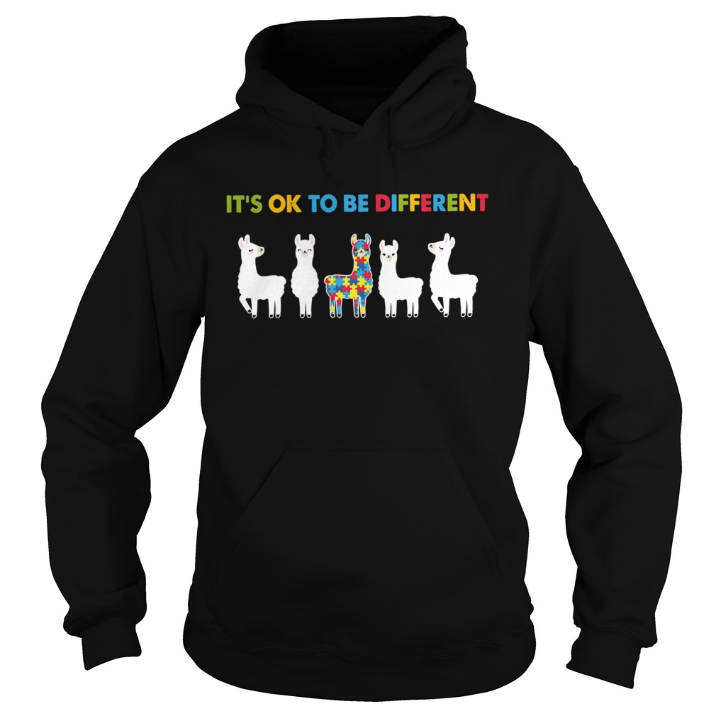 Llama Autism Its Ok To Be Different  Hoodie