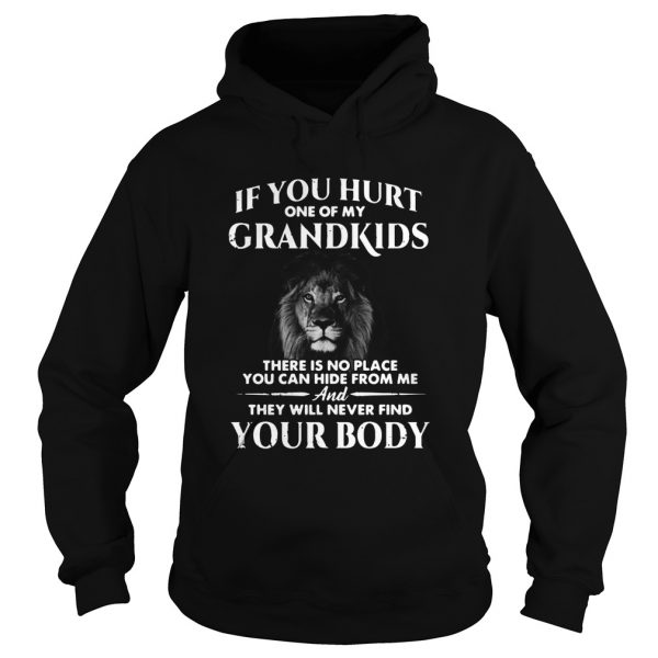 Lion If You Hurt One Of My Grandkids There Is No Place You Can Hide From Me  Hoodie