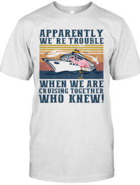 Flamingo Apparently We'Re Trouble When We Are Cruising Together Who Knew Vintage T-Shirt