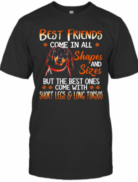 Dachshund Best Friends Come In All Shapes And Sizes T-Shirt