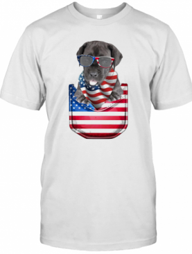Great Dane Pocket American Flag Independence Day T-Shirt