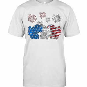 Independence Day Peacocks Wear Bow Tie Firework T-Shirt Classic Men's T-shirt