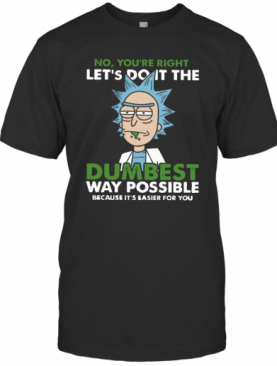 No Youre Right Lets Do It The Dumbest Way Possible Because Its Easier For You T-Shirt