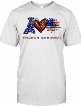 Schnauzer Love America 4Th Of July Independence Day T-Shirt
