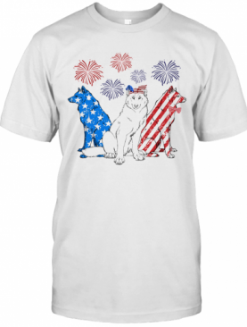 Wolf Firework American Flag Independence Day T-Shirt