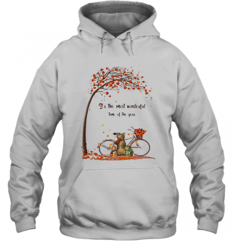 Family Cats It'S The Most Wonderful Time Of The Year T-Shirt Unisex Hoodie