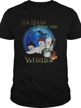 Bichon fries Halloween It's hocus pocus time witches shirt