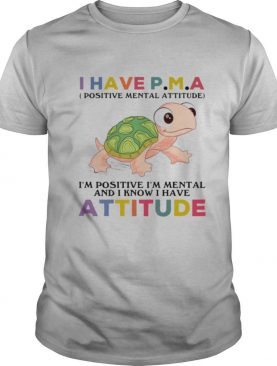 Turtle I Have PM A IM Positive I'M Mentally And I Know I Have Attitude shirt