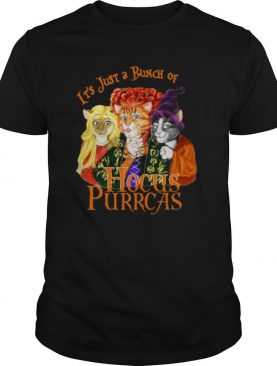 It's Just A Bunch Of Hocus Purrcas shirt