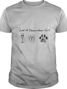 Just A December Girl Love Wine Flip Flops And Dogs shirt
