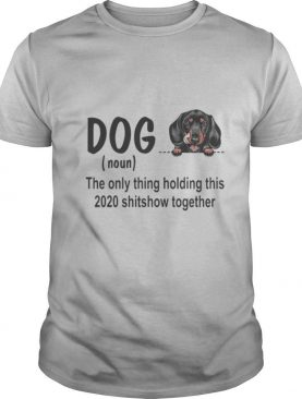 Dog dachshund royal noun the glue holding this 2020 shitshow together shirt