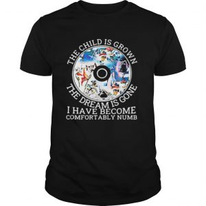 Pink floyd band cd the child is grown the dream is gone and i have become comfortably numb shirt