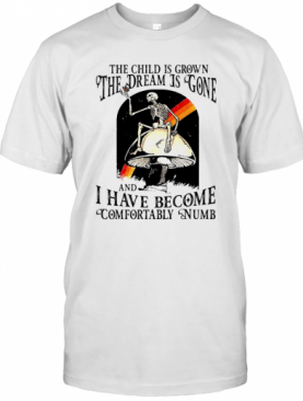 The Child Is Grown The Dream Is Gone And I Have Become Comfortably Numb T-Shirt