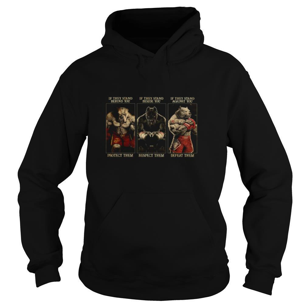 Pitbull Boxing Protect Respect Defeat If They Stand Behind You shirt