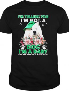 Samoyed Dog I'm Telling You I'm Not A Dog I'm A Baby And My Mom Is Always Right shirt