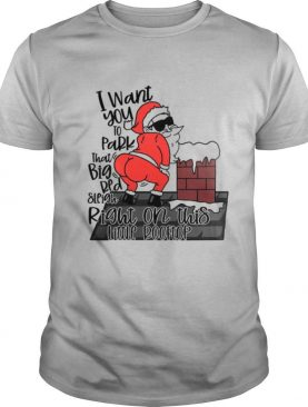 Santa Claus I Want You To Park That Big Red And Light Right On This Rooftop Christmas shirt
